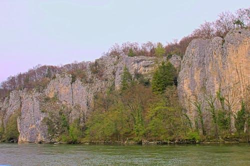 多瑙河, 岩石, 長滿苔蘚的岩石 的 免費圖庫相片