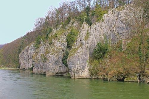 多瑙河, 費爾斯, 長滿苔蘚的岩石 的 免費圖庫相片