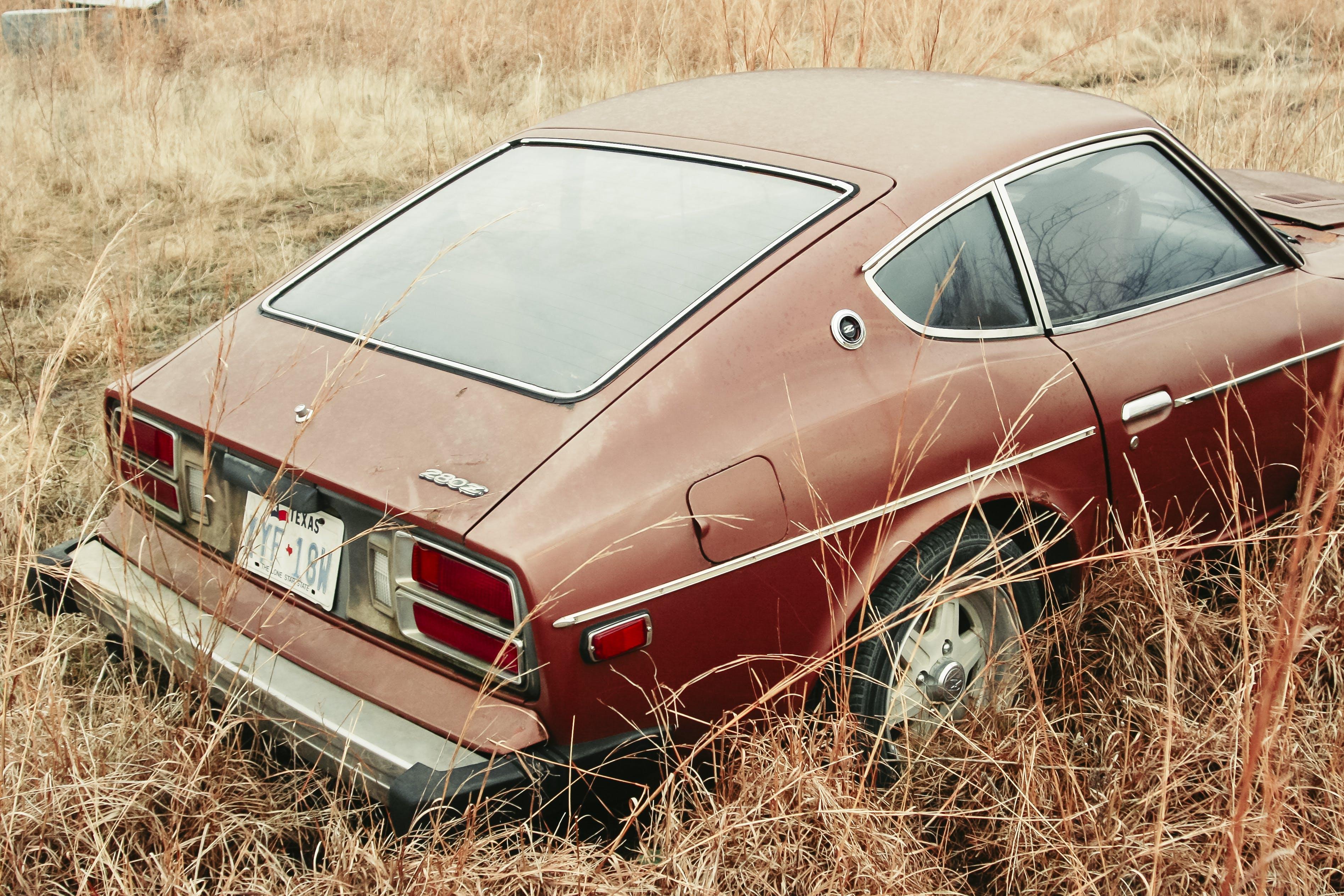 Základová fotografie zdarma na téma auto, automobil, automobilový, barva