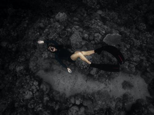 Fotos de stock gratuitas de apnea, bucear, buzo, mar profundo