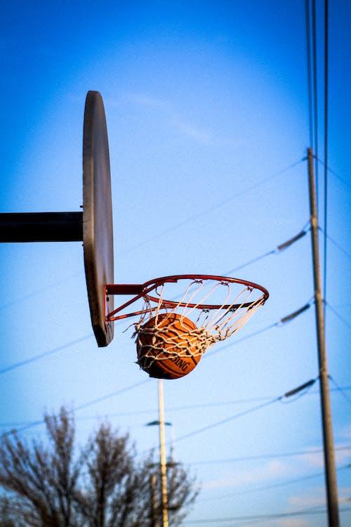Ilmainen kuvapankkikuva tunnisteilla ampua, koripallo, koripallokenttä, koripallokori