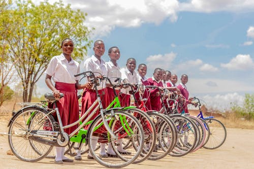 Imagine de stoc gratuită din afro-americani, arbore, biciclete, biciclist