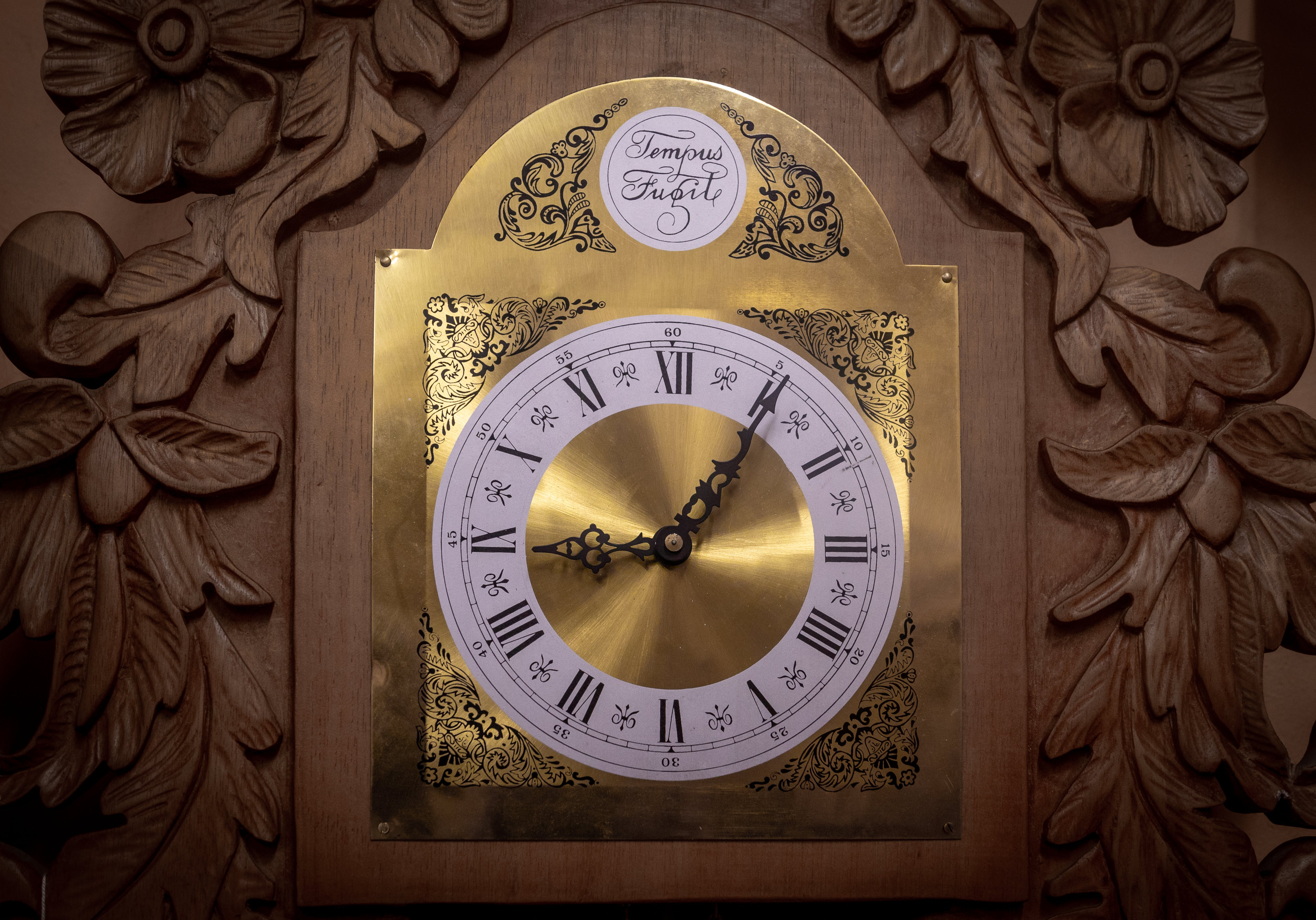 Free stock photo of antique, carved wood, clocks, count