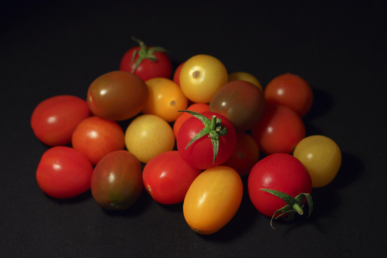 Gratis lagerfoto af Cherrytomater, close-up, delikat, ernæring