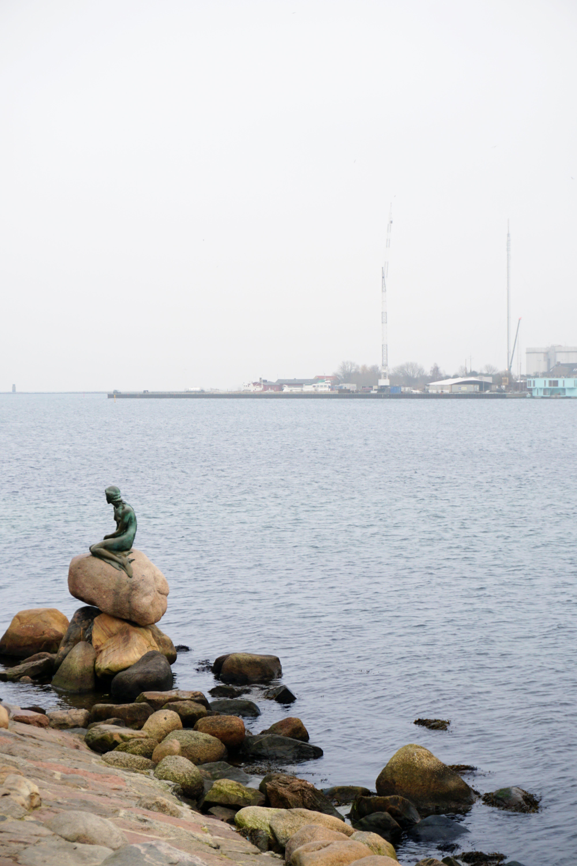 Free stock photo of copenhagen, denmark, mermaid