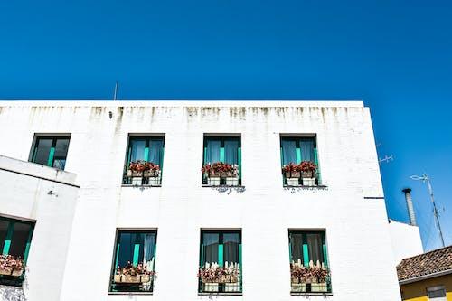 Základová fotografie zdarma na téma bílá, dům, modrá, obloha