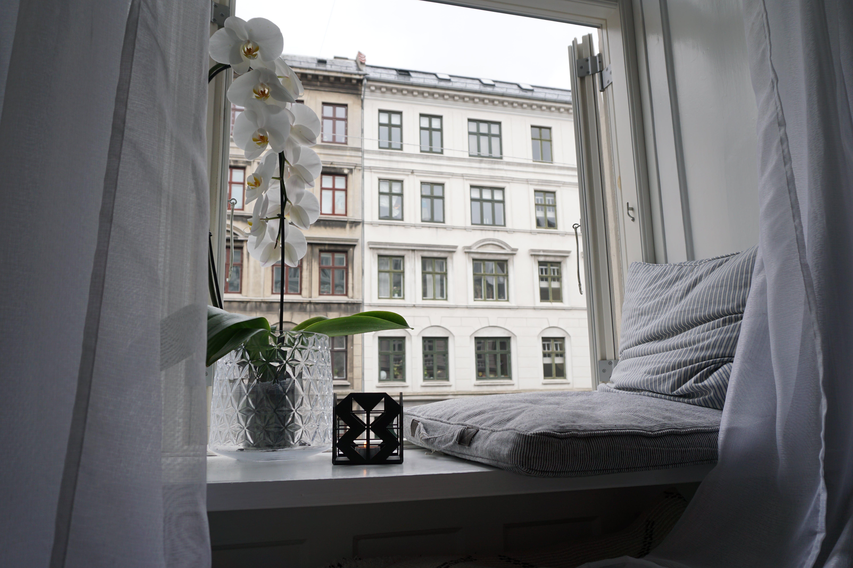 Free stock photo of copenhagen, cosy, cozy home