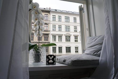 Δωρεάν στοκ φωτογραφιών με άνετο σπίτι, άνετος, Κοπεγχάγη