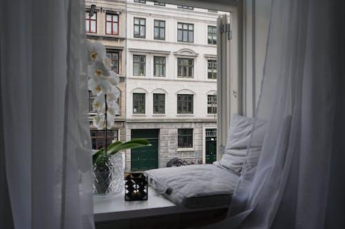 Δωρεάν στοκ φωτογραφιών με άνετο σπίτι, άνετος, Άνθρωποι, αρχιτεκτονική