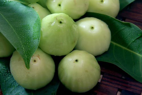 Kostnadsfri bild av färsk, frukt, grön, guava