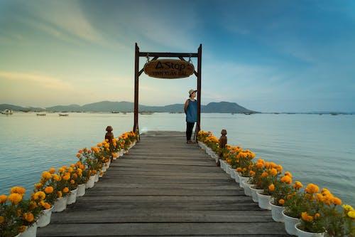 Foto d'estoc gratuïta de a l'aire lliure, dona, embarcador, mar