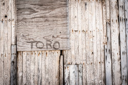 Brown Toro Painted Wooden Wall