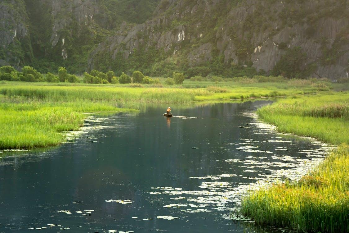 草の近くの水域でボートに乗っている人