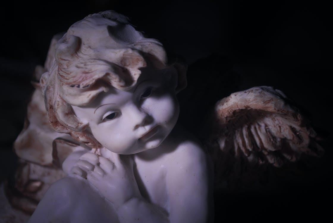 Free stock photo of angel, cherubin