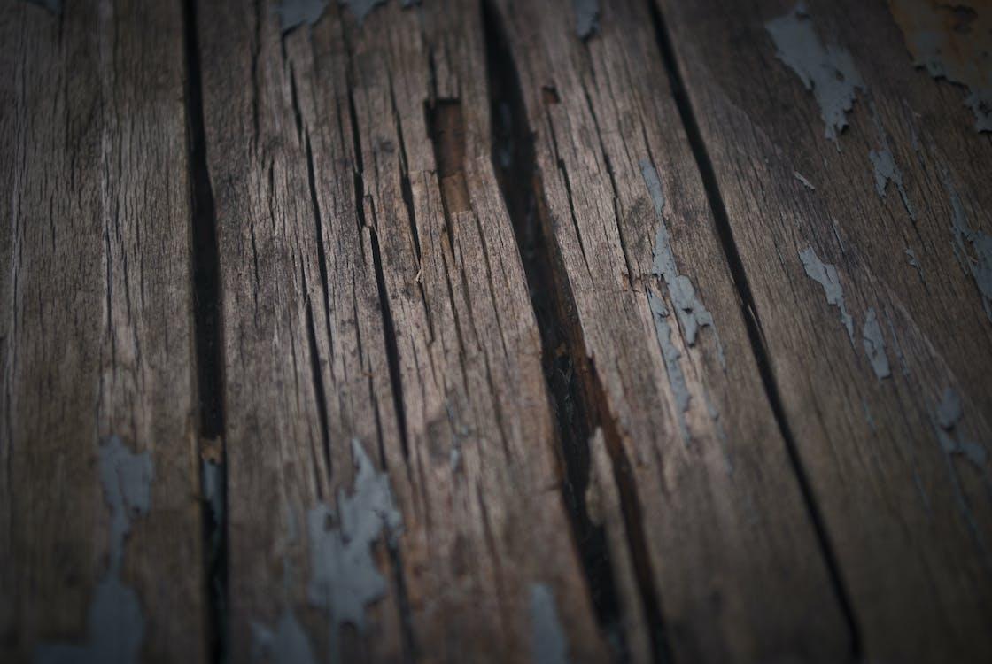 Foto d'estoc gratuïta de fusta, pis, planta