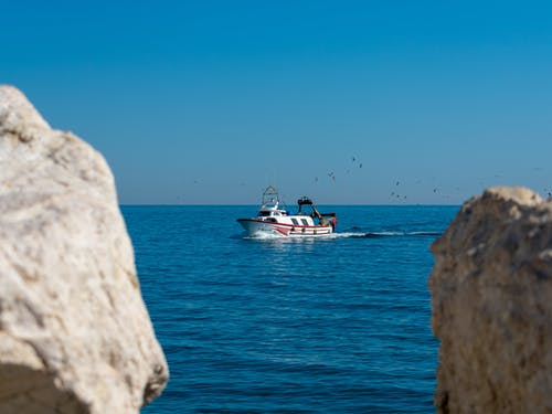 Free stock photo of arriving port, boat, fish boat, spanish boat