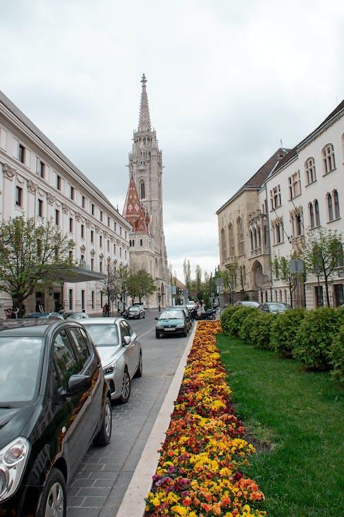 Ilmainen kuvapankkikuva tunnisteilla arkkitehtuuri, buda, Budapest, eurooppa