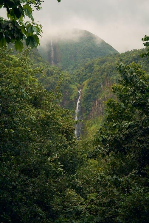 Waterfalls in Mountain