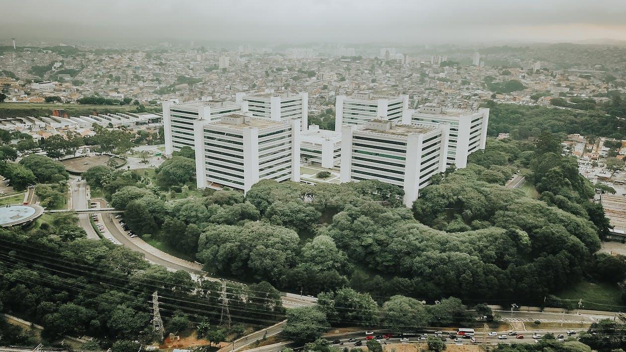 Pembangunan kota di hutan rimba adalah salah satu contoh fisis possibilisme