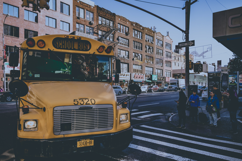 bus, business, fahrzeug