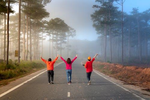 Základová fotografie zdarma na téma asfalt, chůze, lidé, mlha