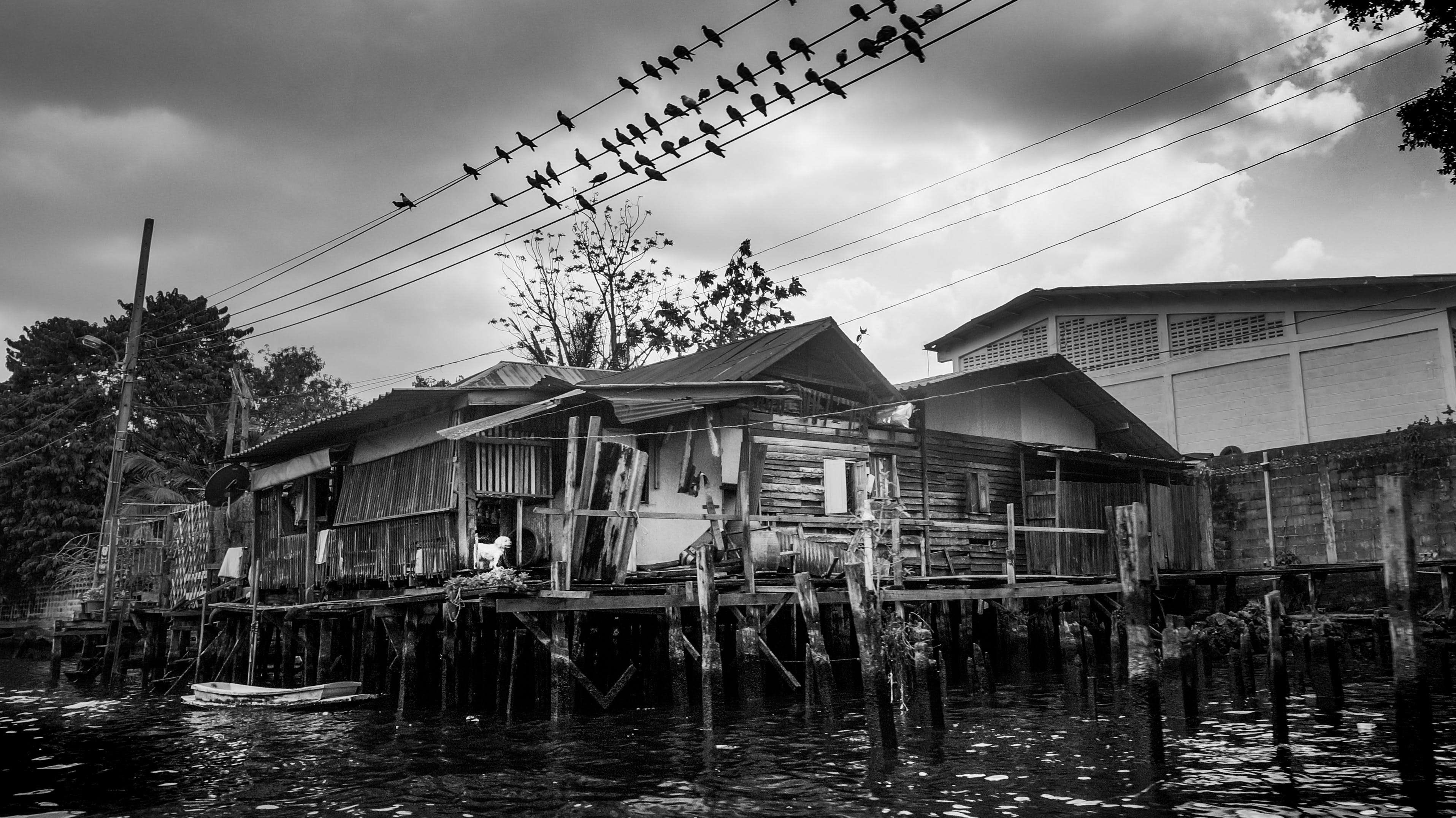 Δωρεάν στοκ φωτογραφιών με ασπρόμαυρο, γκρι, νερό, σκοτάδι