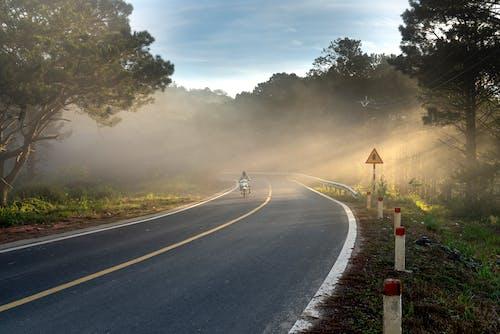 ağaçlar, asfalt, binici, gün doğumu içeren Ücretsiz stok fotoğraf