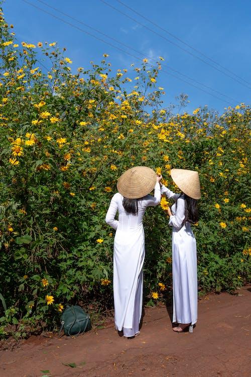 Immagine gratuita di campo di fiori, fiori, persone, raccogliendo