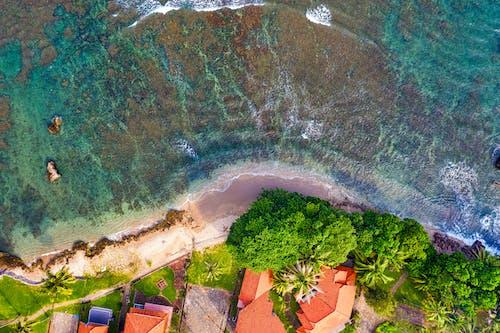 Безкоштовне стокове фото на тему «берег, берег моря, Будинки, вода»