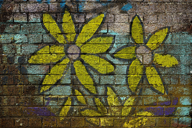 Ingyenes stockfotó fal, falfirka, festék, sárga témában