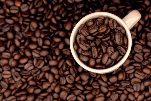 Δωρεάν στοκ φωτογραφιών με καφέ φλιτζάνια, καφές