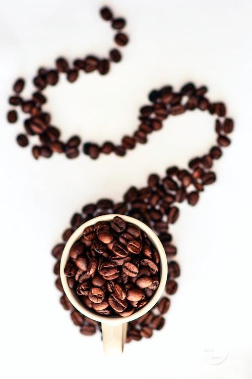 Δωρεάν στοκ φωτογραφιών με καφές, κόκκοι καφέ, κούπα του καφέ