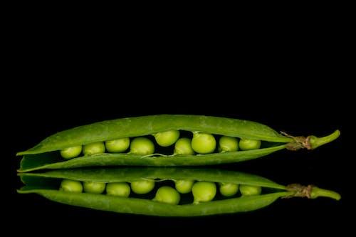 Δωρεάν στοκ φωτογραφιών με αρακάς