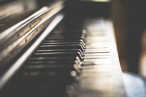 Základová fotografie zdarma na téma akord, eben, harmonie, hudba