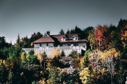 Kostnadsfri bild av arkitektur, bungalow, byggnadsexteriör, falla