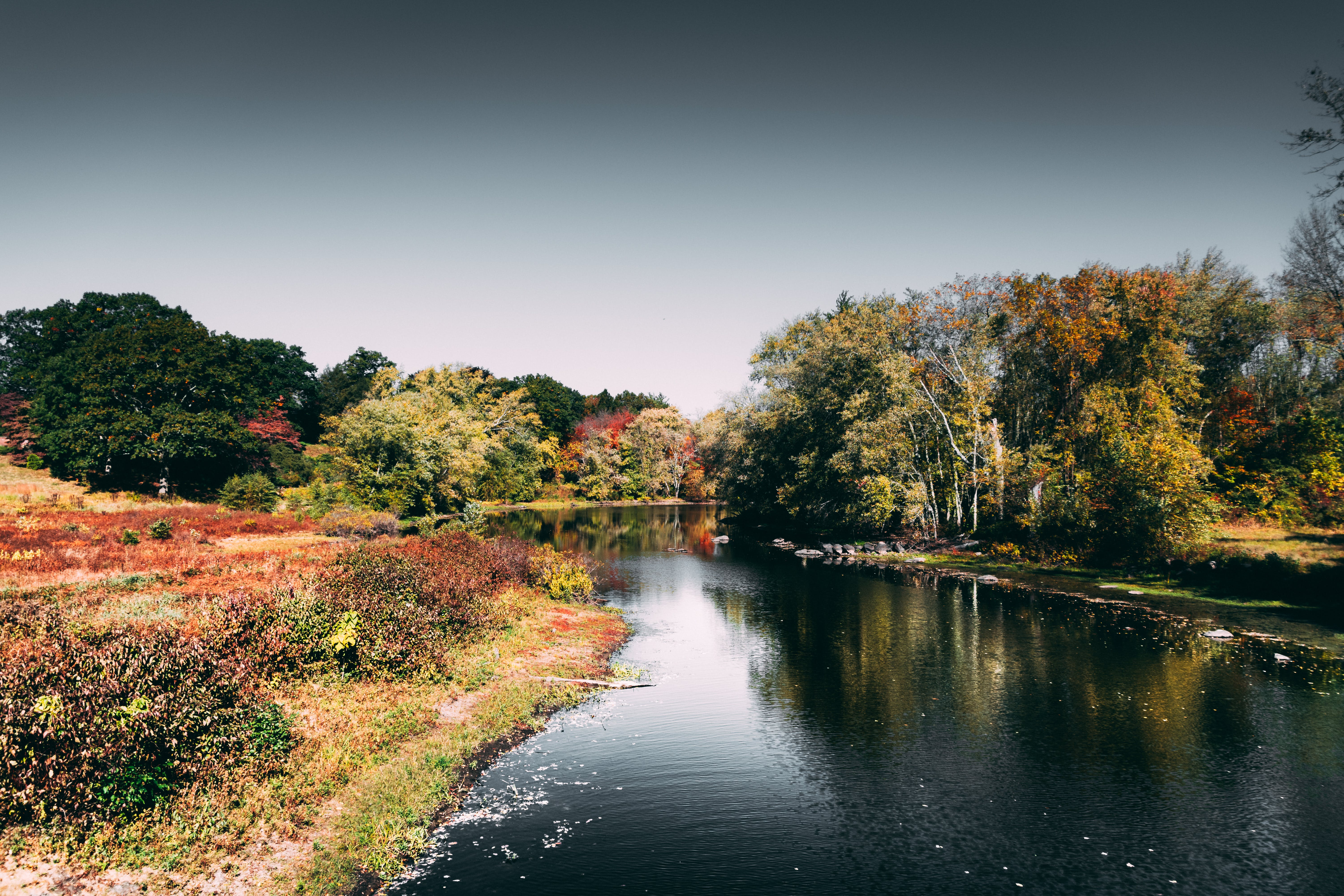Photo of River During Daytime