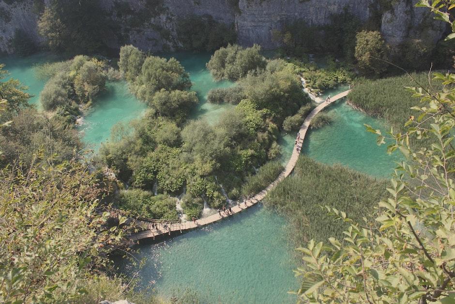 blue, forrest, lake