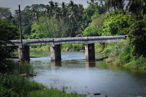 Free stock photo of india, nature, river
