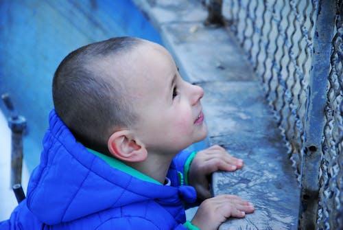 Imagine de stoc gratuită din băiat, copii, copil, copil dragut
