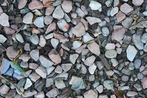 Foto d'estoc gratuïta de molt, roques, textura