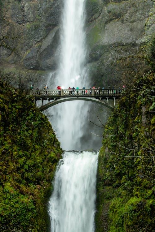 Gratis stockfoto met berg, bomen, brug, buiten