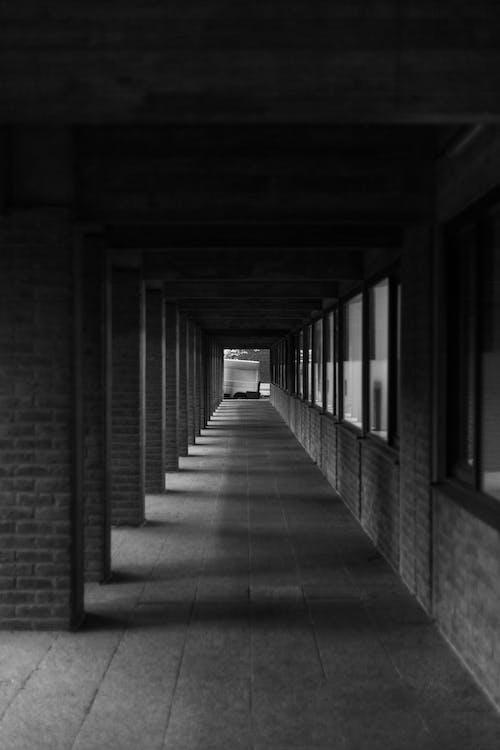 건물, 건축, 기둥, 내부의 무료 스톡 사진