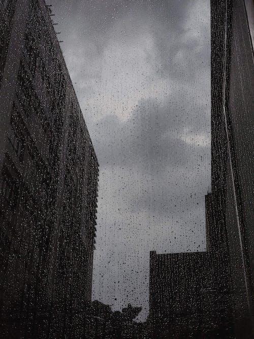 Foto profissional grátis de chuva, gotas de chuva, janela, molhado