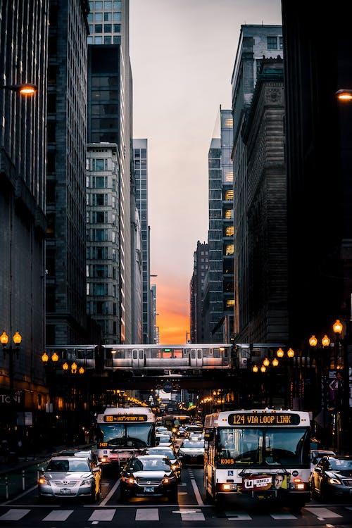 Základová fotografie zdarma na téma autobus, budovy, centrum města, chicago