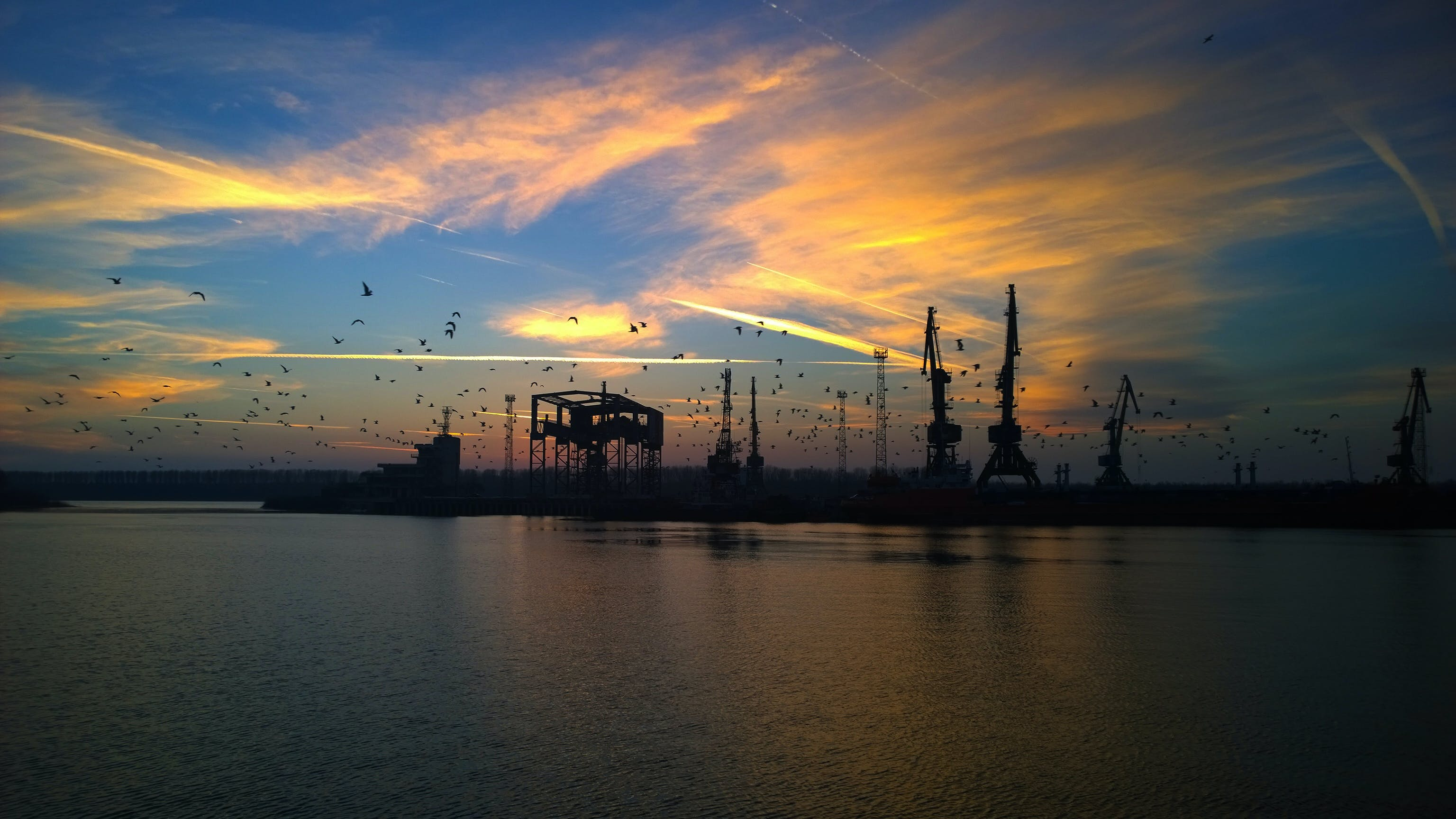 Free stock photo of backwater, birds, clouds, crane