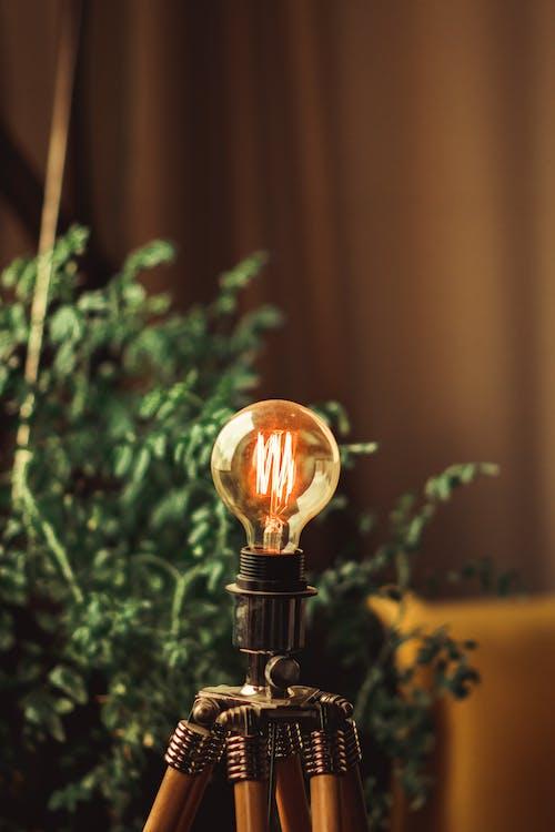 Foto profissional grátis de energia, iluminado, lâmpada, leve