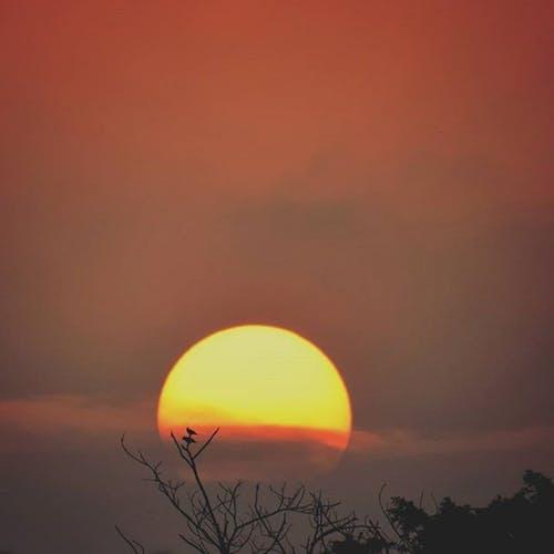 아침 해, 콜로라도의 무료 스톡 사진