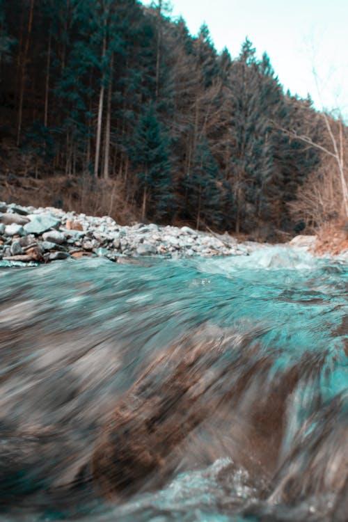Ingyenes stockfotó Dél-Tirol, ég, fák, folyó témában
