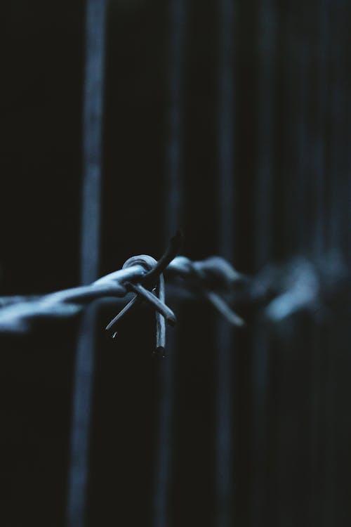 Imagine de stoc gratuită din gard, gard de sârmă, Germania, sârmă ghimpată