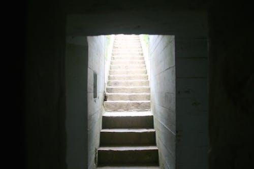 Foto profissional grátis de bunker, degraus